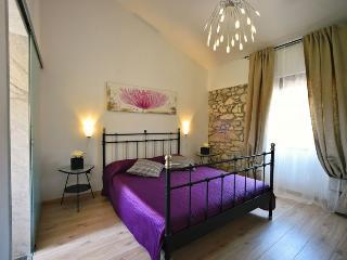 VILLA ANTOANA(125-290) - Labin vacation rentals