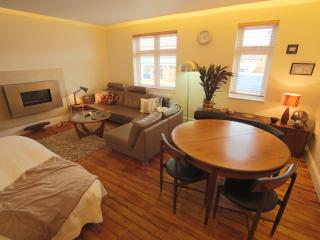 Perfect 1 bedroom Cambridge Condo with Internet Access - Cambridge vacation rentals