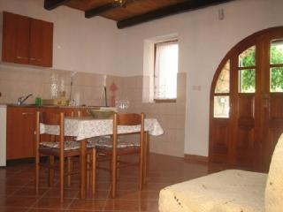 ANTOLOVIC DANIC(133-295) - Sveti Lovrec vacation rentals
