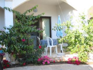 Nice 1 bedroom House in Mandre - Mandre vacation rentals