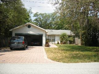 BEAUTIFUL HOME IN QUIET RESIDENTIAL STREET - Palm Harbor vacation rentals