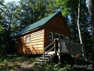 NEW Lakefront Cabin On The Point At Autumn Lake - Pulaski vacation rentals