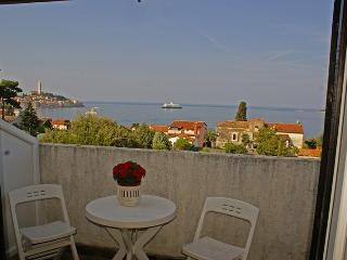 Rovinj Sea view(1452-3884) - Rovinj vacation rentals