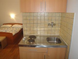 MAGASIC LILI(168-3392) - Draga Bascanska vacation rentals