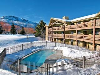 Best Location for Your Ski or Summer Vacation! - Park City vacation rentals