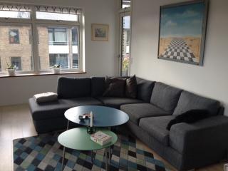 Nice Copenhagen apartment with nice balcony at Valby - Copenhagen vacation rentals