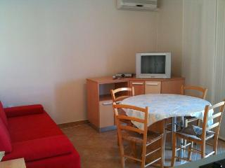 Lovely 1 bedroom House in Caska - Caska vacation rentals