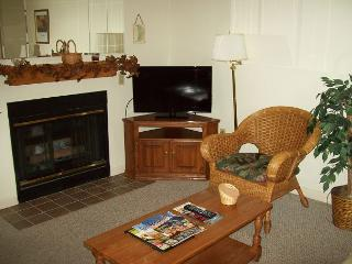 One Bedroom with Jacuzzi Nestled in the Heart of Gatlinburg (Unit 303) - Gatlinburg vacation rentals