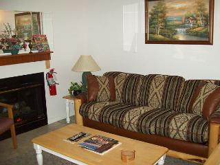 One Bedroom with Jacuzzi Nestled in the Heart of Gatlinburg (Unit 403) - Gatlinburg vacation rentals