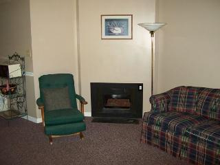 One Bedroom Condo in Downtown Gatlinburg (Unit 203) - Gatlinburg vacation rentals