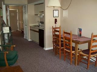 One Bedroom Condo in Downtown Gatlinburg (Unit 204) - Gatlinburg vacation rentals