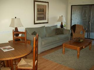 Two Bedroom Condo in Downtown Gatlinburg (Unit 307) - Gatlinburg vacation rentals