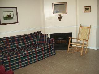 One Bedroom Condo in Downtown Gatlinburg (Unit 209) - Gatlinburg vacation rentals