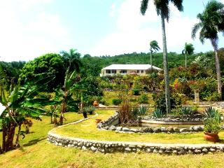 Charming Countryside Chalet - Apartment 2 - Puerto Plata vacation rentals