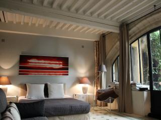 Avignon's heart at the foot of Palais des Papes, Spacious 1 Bedroom with a Grill - Pernes-les-Fontaines vacation rentals