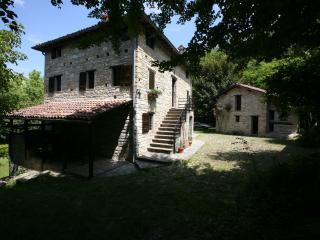 The antique Mill of Valle : The Apartment Lilium - Serramazzoni vacation rentals