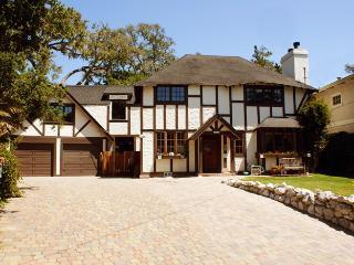 Tudor Rose Manor Large Family Reunion/Retreat Home - Aptos vacation rentals