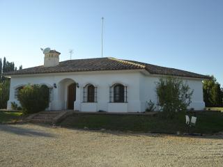 "Chalet in ""Ruta del Quijote"" - Argamasilla de Alba vacation rentals"