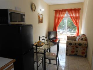 Serene One Bedroom Apartment - Saint Andrew Parish vacation rentals
