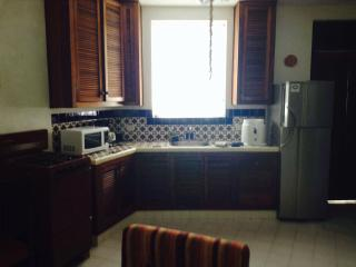 Cozy Litlle Studio few steps from the beach - Paamul vacation rentals