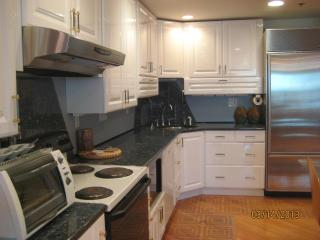 Great Location Amazing Antiques 1 bedroom Apt - Southbridge vacation rentals