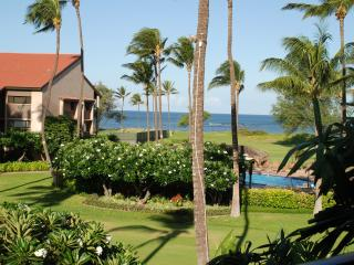 FABULOUS 5 STAR CONDO!!OCEANFRONT/VIEW,FREE WIFI!! - Kihei vacation rentals
