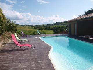 Close to Mirepoix, in the South of France,enjoy - Aude vacation rentals