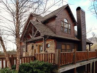 Not too big or small, but just right with our Beary Cozy three bedroom cabin - Sevierville vacation rentals