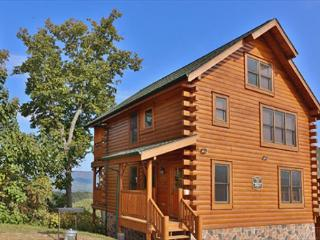 Experiment in Luxury & Relaxation, Sauna, Fitness Room, Pavilion in Resort - Tennessee vacation rentals