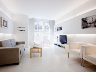 Gorgeus modern design apt near the beach WIFI - Basque vacation rentals