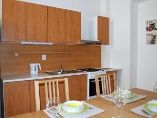 ☆2spacious BDRM Wenceslas Sq. Prague with garden - Prague vacation rentals