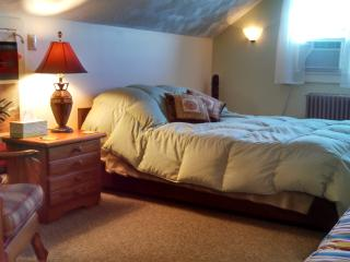 Sweet lovely efficiency 'The Nook' Saranac Lake - Saranac Lake vacation rentals