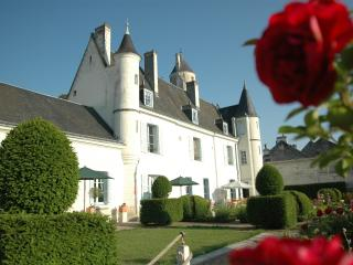 The Knight's Cottage - Loches - Loire Valley - Loches vacation rentals