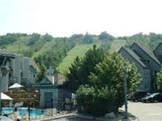 Mountainside 2-story Studio Loft with kitchen - Blue Mountains vacation rentals