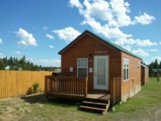 FOXTAIL CABIN ~ 1 BEDROOM - Image 1 - Island Park - rentals