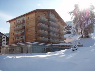 PRACONDU 2 2306 - 3P6 - Nendaz vacation rentals