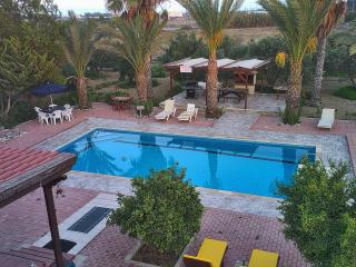 Cyprus at its best - Pentayia residence - Tersefanou vacation rentals