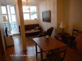 Apartment in Central Reykjavik - Reykjavik vacation rentals