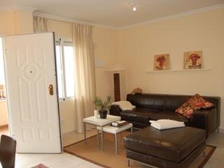 Penthous with bigger Livingroom - Los Alcazares vacation rentals