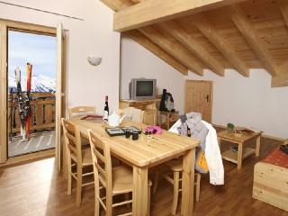 Cozy 2 bedroom Condo in Nendaz - Nendaz vacation rentals