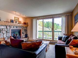 Cozy 2 bedroom Apartment in Beaver Creek - Beaver Creek vacation rentals