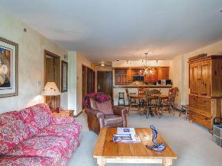 Comfortable Condo with Dishwasher and VCR - Beaver Creek vacation rentals