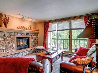 Borders Lodge - Lower 304 - Beaver Creek vacation rentals