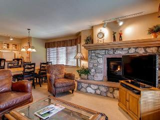 Comfortable 2 bedroom Condo in Beaver Creek - Beaver Creek vacation rentals
