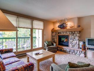 Nice 2 bedroom Apartment in Beaver Creek - Beaver Creek vacation rentals