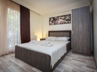 Modern&Spacious 2 bedroom & 2 bathroom in Taksim - Istanbul vacation rentals