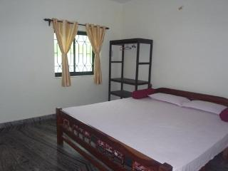 2BHK Apartment Vacation rental on Morjim Beach - Morjim vacation rentals