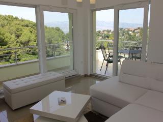 Villa Vesna Spalatina - Splitska vacation rentals