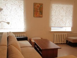 Kitay-gorod Apartment - Central Russia vacation rentals