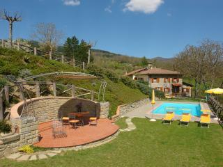 VILLA LA SCATOLAIA - Pratovecchio vacation rentals